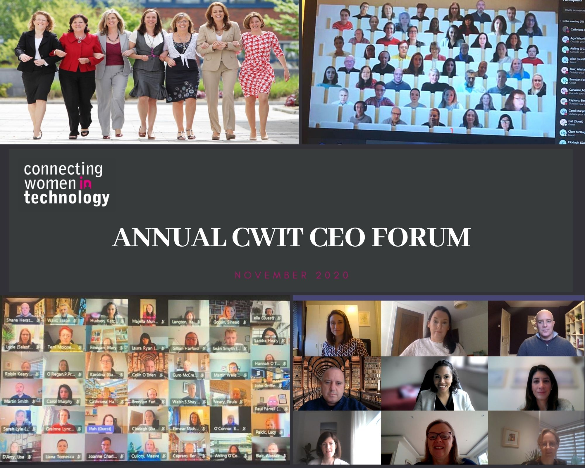 Diversity and Inclusion remains key focus for Ireland's Top Tech Companies as progress discussed at Annual CWiT CEO Forum